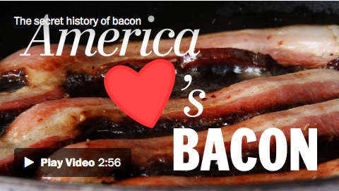 bacon 24/7? why not! here's the story